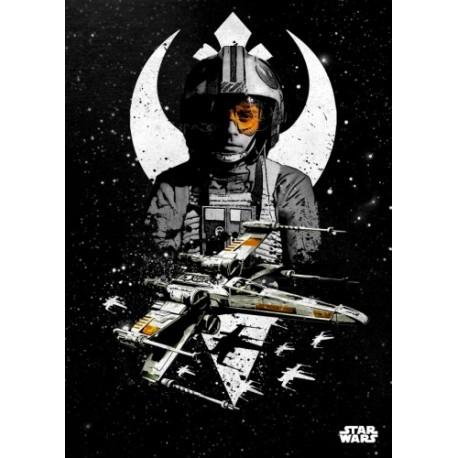 Póster metálico Luke Skywalker & X-Wing Star Wars
